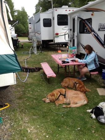 Mesa Campground : bumper to bumper campers!!