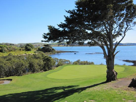 ‪Waitangi Golf Club‬