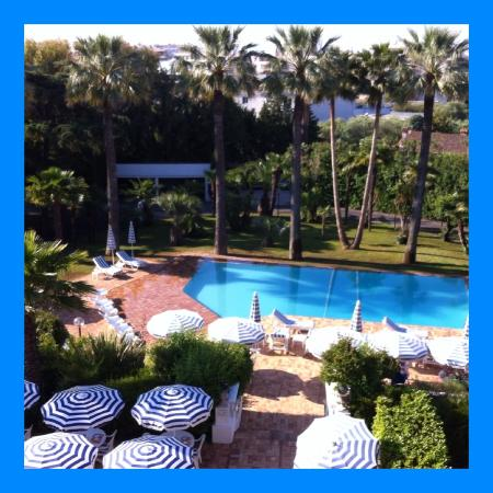 Hotel des Mimosas : Paradijsje