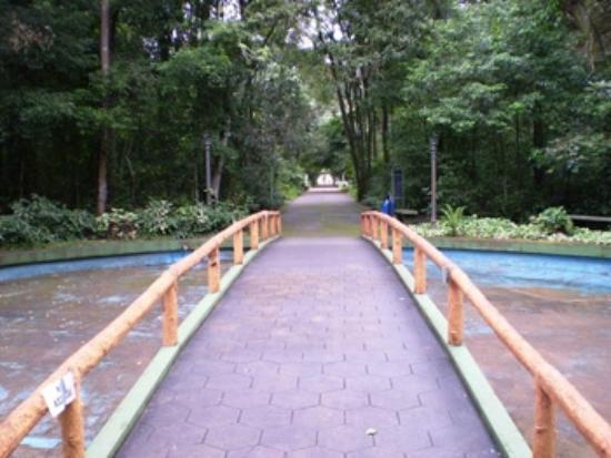 Araguari: ponte