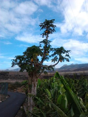 Hotel Rural El Navio照片