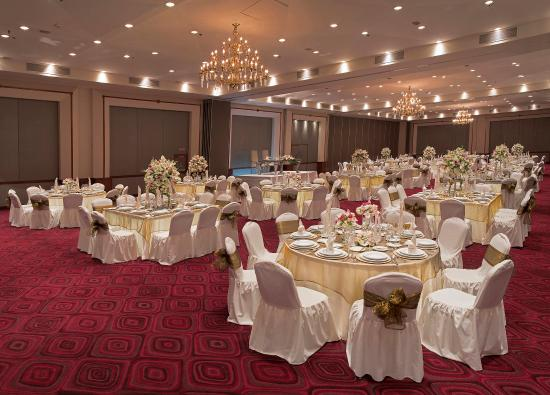 راديسون هوتل فلامينجوز مكسيكو سيتي: Banquet Room