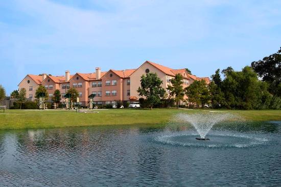 Homewood Suites by Hilton Houston - Woodlands : Hotel Rear Exterior