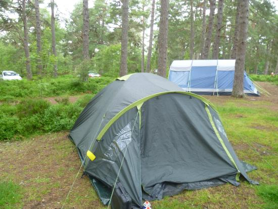 Rothiemurchus Camp and Caravan: Our camp with closeness of family next door