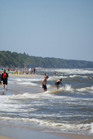 Baginscy SPA: plaża