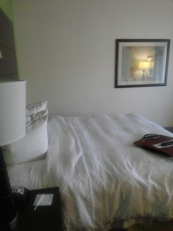 Hampton Inn Anderson/ Alliance Business Park: king size bed