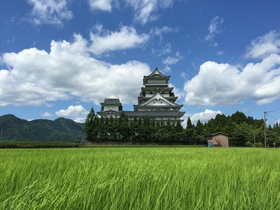 Katsuyama Castle Museum