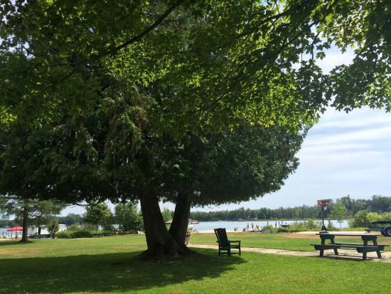 Cedarville, MI: Les Cheneaux Landing view