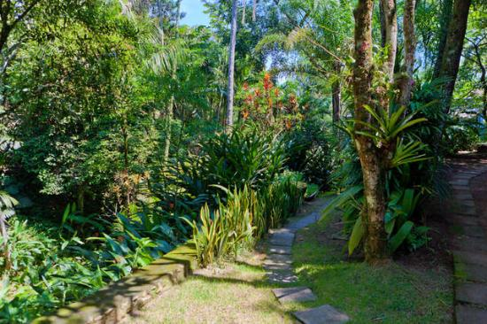 Na Mata Suites: 4500m2 de Jardim Tropical