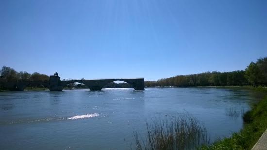 Ile de la Barthelasse : il ponte
