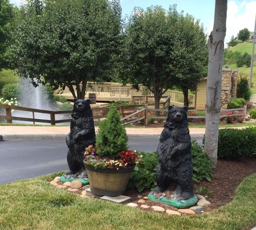 Wyndham Smoky Mountains: Leaving -the only bears we saw -thankfully!