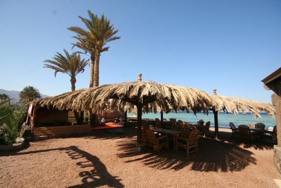 Photo of Dive Urge Dahab