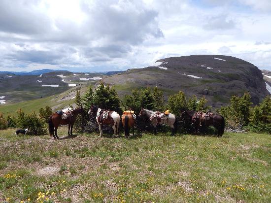 Turpin Meadow Ranch: photo2.jpg