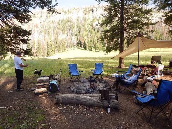 Turpin Meadow Ranch: photo6.jpg