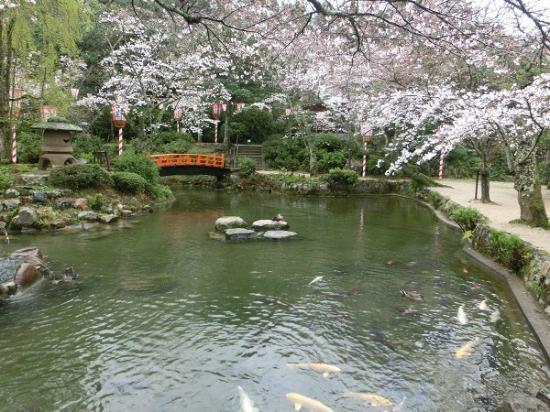 打吹公園 - 倉吉市、打吹公園の...