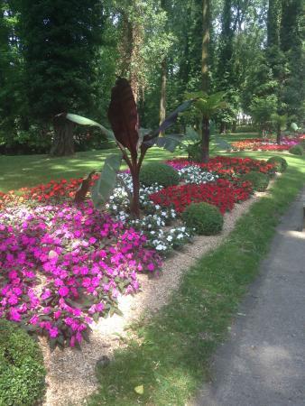 Parc Pres la Rose: Visite au près la rose (3.07.15)
