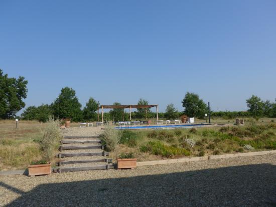 Podere le Spighe: Pool
