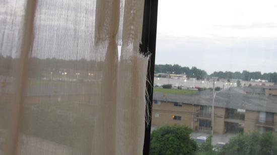 Wickliffe, Ohio: rideau déchiré