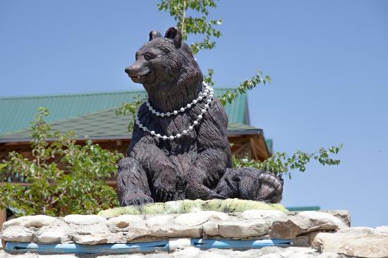 Bolshaya Medveditsa: Большая Медведица.  Наш талисман
