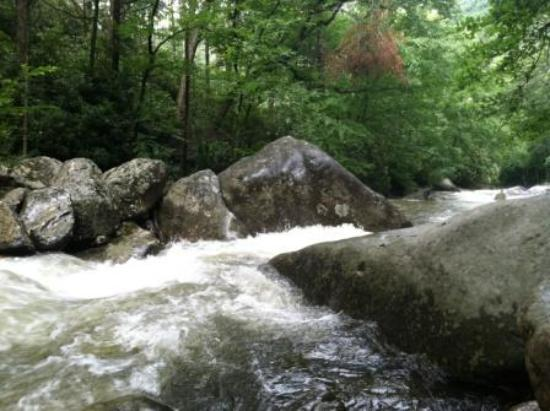 Great Smoky Mountains National Park, TN: Whitewater rapids at Great Smoky Mountain National Park