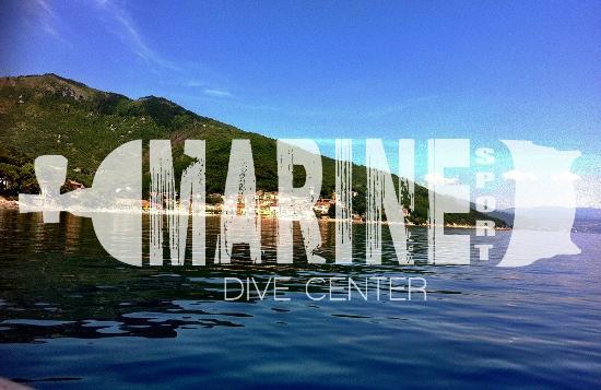 Marine Sport Dive Center