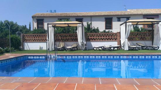 Hotel La Garapa: birds flying over pool