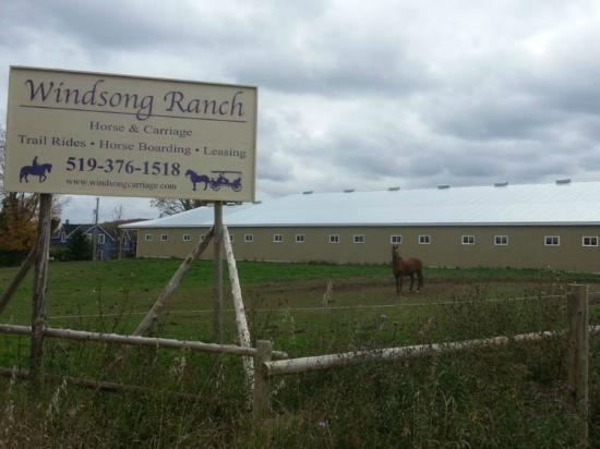 Grey County, Canada: Windsong Ranch