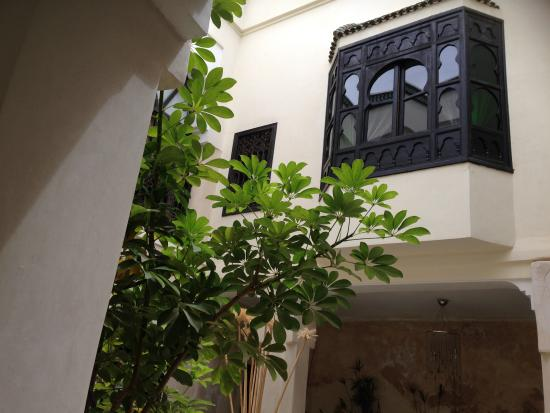 Riad Bamboo: reception