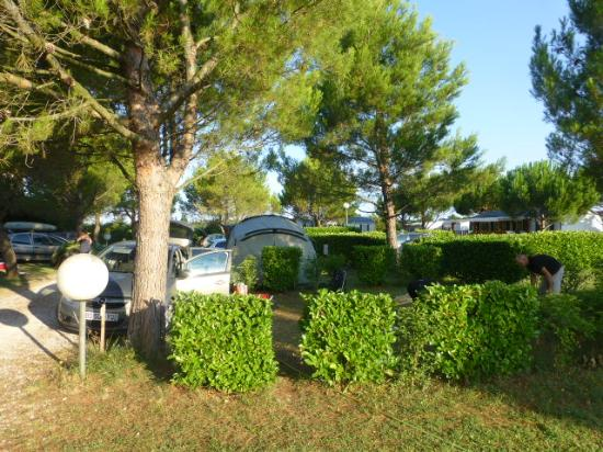 Camping Manon: Les emplacements