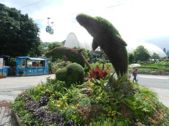 Ocean Park: парк