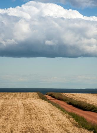 PEI  Photography Tours: Lane to the Beach