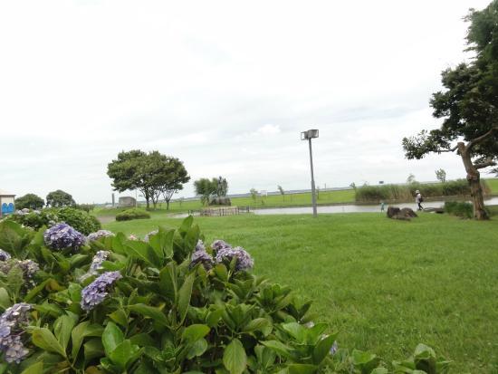 Kasumigaura City Ayumizaki Park: 風景