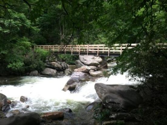 Great Smoky Mountains National Park, TN: The scenery was breathtaking on the Chimney Tops Trail!