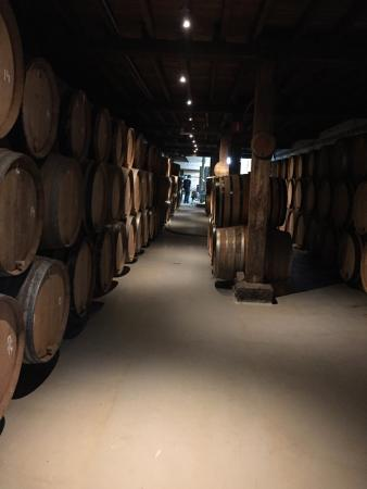 Cantillon Brewery: Amazing solo outing! I wish i had room in my suitcase for one of those quaint wooden crates