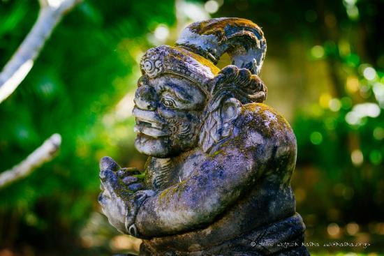 Fare Ti'i  (Villa Ti'i Bali): Charming environment