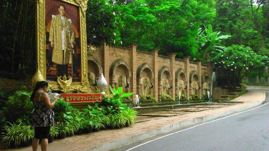 Chiang Mai Zoo Aquarium - Picture of Chiang Mai Zoo Aquarium, Chiang Mai - Tr...