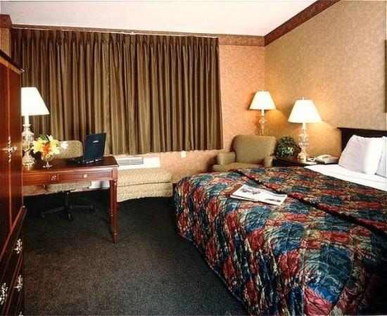 Chicago O'Hare Garden Hotel: Guest Room - King