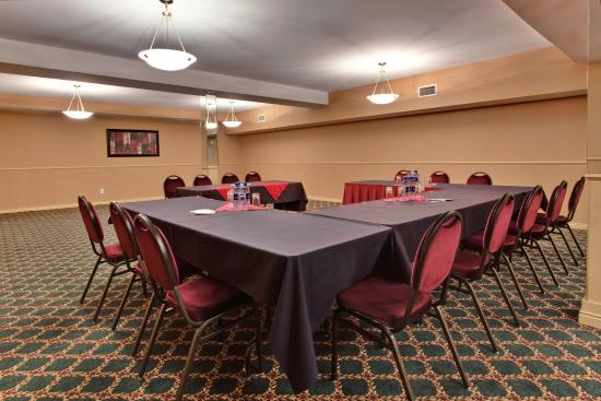 Holiday Inn Express Hotel & Suites Edmonton at the Mall: Boardroom