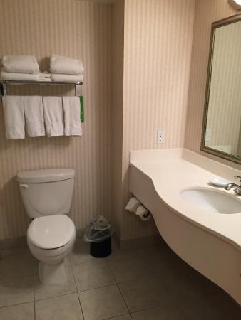 Hampton Inn by Hilton Kamloops: Hotel room bathroom