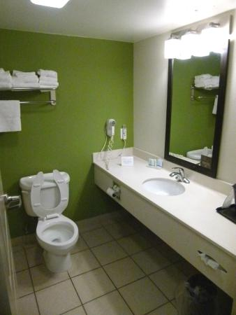 Sleep Inn & Suites Harrisonburg: Bathroom, nice large counter