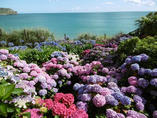 The Nare : Amazing gardens and sea view