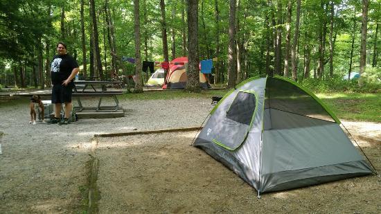Campsite C07