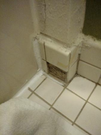 Missoula Sleep Inn: Broken tile in bathroom