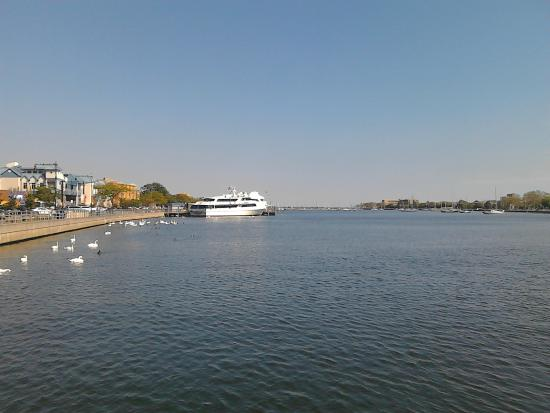 picture of sheepshead bay brooklyn tripadvisor. Black Bedroom Furniture Sets. Home Design Ideas