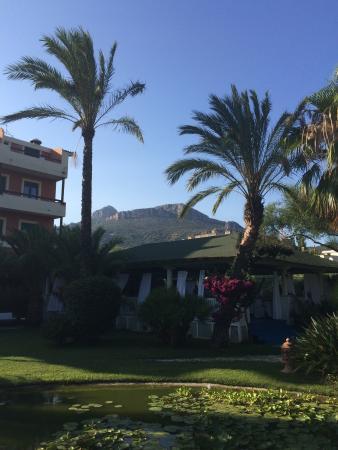 Hotel Mediterraneo : photo1.jpg
