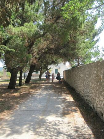 Dalmatië, Kroatië: W centrum
