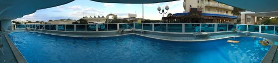 Hotel Negresco: Vista camere fronte mare, terrazza all'aperto per pranzo e colazione vista mare, piscina e visua