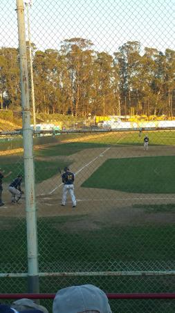 Slo Blues Baseball