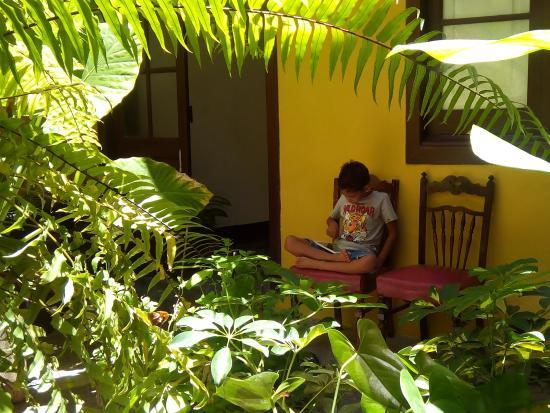 Pension Cejas : Las plantas en la parte de descanso te dan el relax nesesario