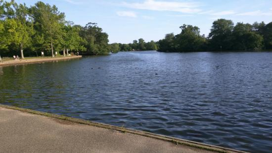 Paddle Boats Picture Of Belmont Lake State Park North